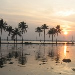 Wetland ecosystem in Kerala, India