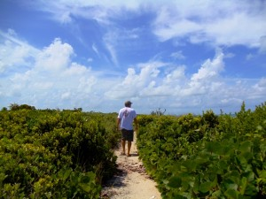 Walking about the island