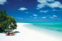 Heron Island Beach