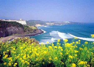 (Beautiful Jeju Island, South Korea)
