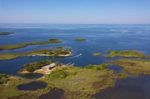 Crows Nest Island Courtesy of ABCActionNews.com