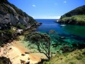 Great Barrier Island - Photo Courtesy of AucklandSphere.org