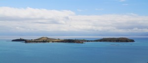 Rotoroa Island - Photo Courtesy of Rotoroa.org.nz